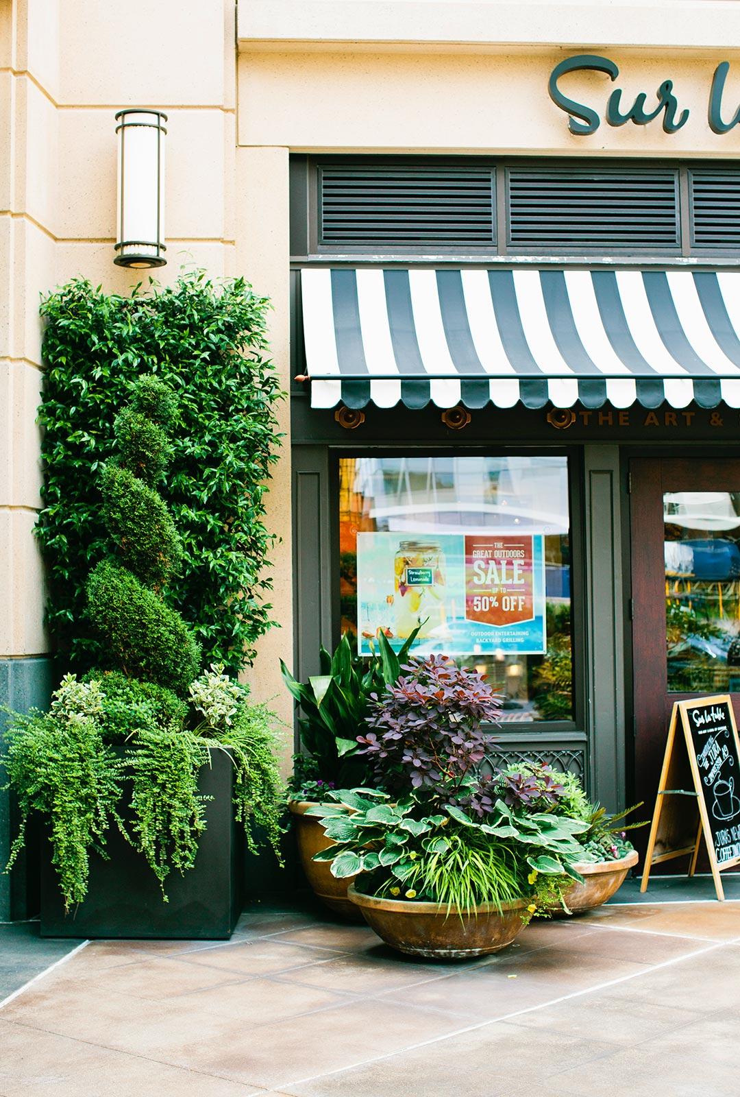 Whole Foods Everett Wa